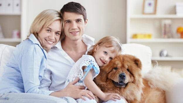 Wills & Trusts dog-young-family Direct Wills Parsons Green
